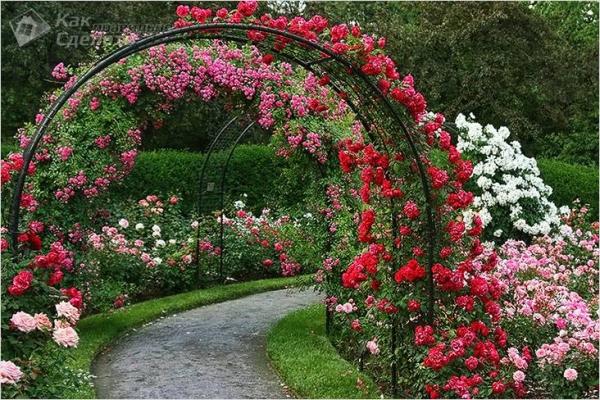 Как сделать садовую арку своими руками (+фото)